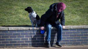 犬の散歩をしている人の画像