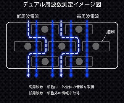 タニタの測定周波数画像