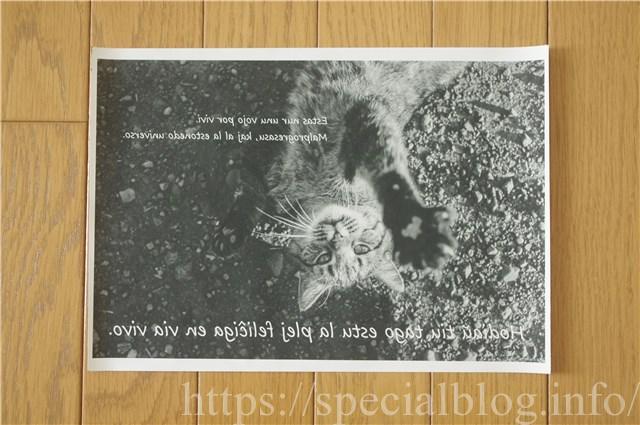 アイロンプリント画像3