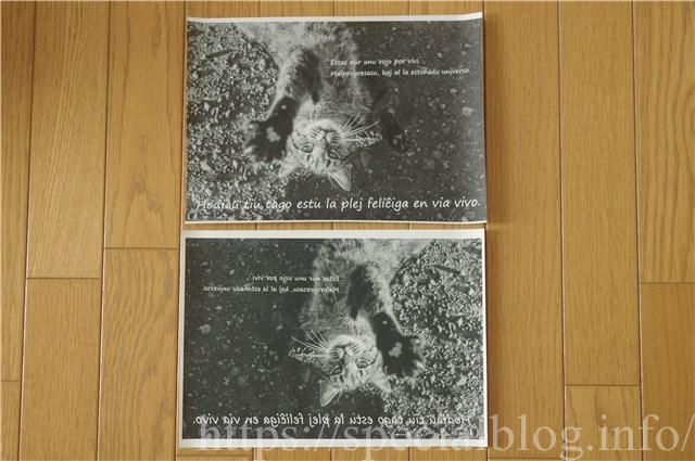 アイロンプリント画像4