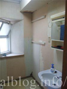 漆喰が塗られた脱衣所の壁1